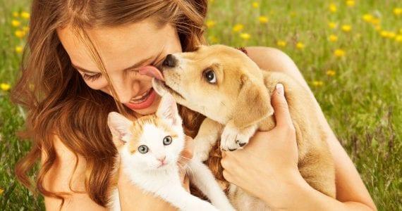 Cum alegem animalul ideal de companie? Iată de ce trebuie să ții cont