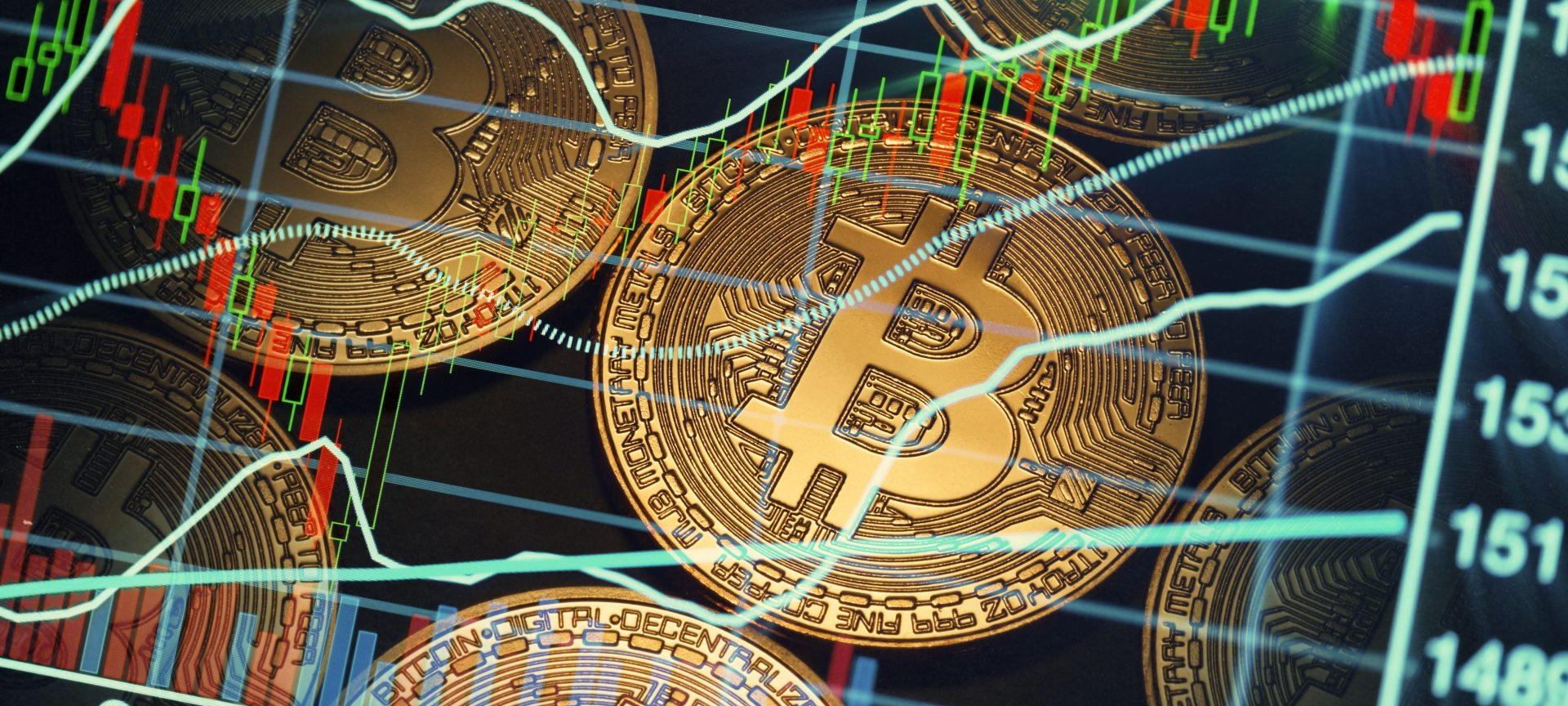 câștiguri profitabile în rețea