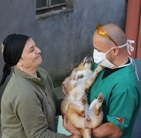 Homeless Animal Hospital