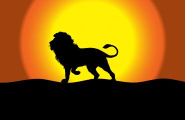 Soare in Leu