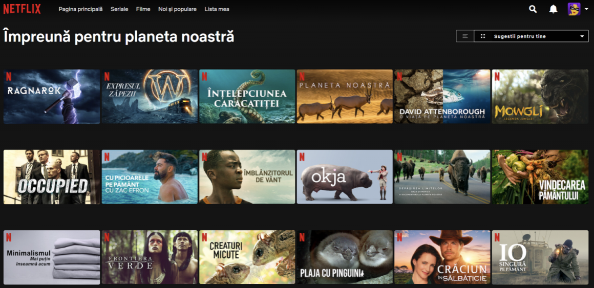 sustenabilitate Netflix